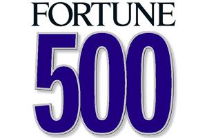 Varför använder fortune 500 mentorkap