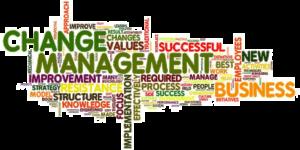 8 punkter för lyckad förändring